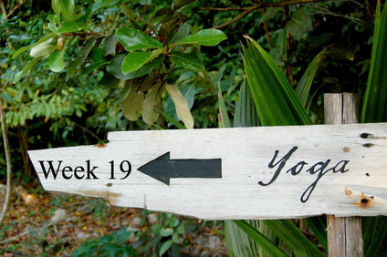 Yoga sign jungle
